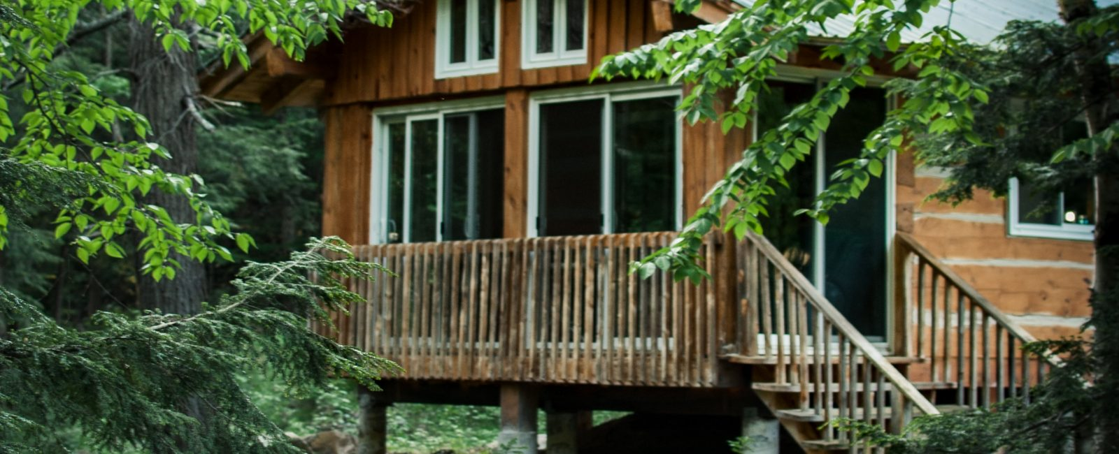 wooden house at forest